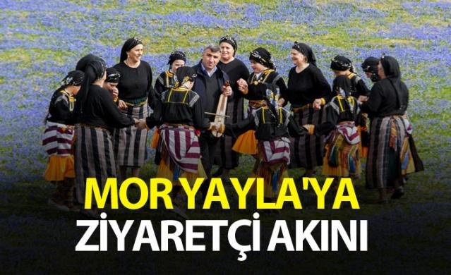 Trabzon'un Mor yaylasına ziyaretçi akını