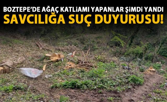 Boztepe'de ağaç katliamı yapanlar şimdi yandı!