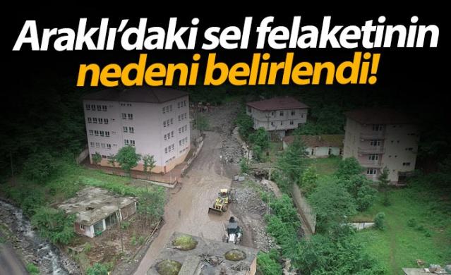 """Trabzon'un Araklı ilçesi Çamlıktepe mahallesinde 18 Haziran 2019 günü meydana gelen 8 kişinin öldüğü, 2 kişinin kaybolduğu selle ilgili Karadeniz Teknik Üniversitesi (KTÜ) akademisyenlerinin bölgede yaptığı arazi çalışmaları tamamlanarak rapor haline getirildi. Hazırlanan raporda selin nedeni olarak """"Çamlıktepe Deresi'nin heyelanla akan malzeme ile dolması ve oluşan gölün ani olarak boşalması"""" gösterildi."""