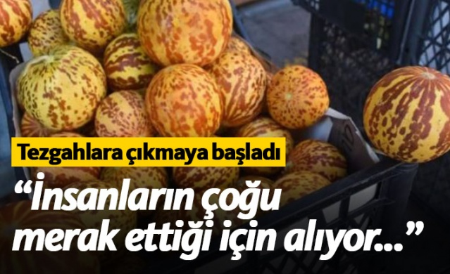 İzmir'in Torbalı ilçesine bağlı Çapak Mahallesi'nde kırlangıç kavunu yetiştiren Akın Tamgacı, büyük talep gören bu ürünün yemek için değil kokusu dolayısıyla tercih edildiğini söyledi.