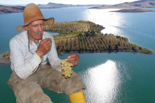 Diktiği 3 bin 500 fidanı 14 yılda yetiştiren, kendi imkanları ile de sulama havuzu yapan Abay, sadece ekmek ve içme suyu gibi diğer ihtiyaçlarını almak için teknesiyle iki haftada bir ilçeye gidip geliyor.