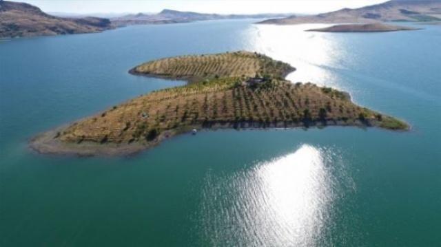 Elektriğin ve içme suyun bulunmadığı adada 14 sene boyunca fidanlar diken ve çeşit çeşit meyve ve sebze yetiştiren Abay, ıssız adayı yeşile bürüdü.