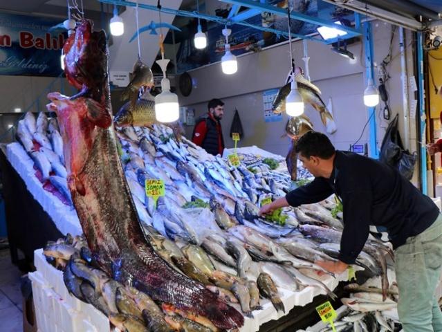 Av sezonuna bollukla girilen Karadeniz'de hava şartlarından dolayı balıkların fiyatı eylül ayının başına göre biraz arttı. Fiyatlara rağmen vatandaşların balıklara olan ilgisinde azalma olmazken, bu sezonun en büyük yayın balığı vatandaşların ilgi odağı oldu. 2 metre 10 santim uzunluğunda, 130 kilo ağırlığındaki yayın balığını tezgahta gören vatandaşlar, şaşkınlıklarını gizleyemediler. Balıkçılar, 2 metreden uzun olan yayın balığının bu sezon yakalanan en büyük yayın balığı olduğunu söylediler.