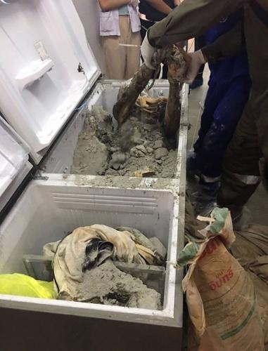 İş kadınının cesedi buzdolabından çıktı!