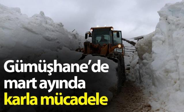 Gümüşhane'de mart ayında karla mücadele