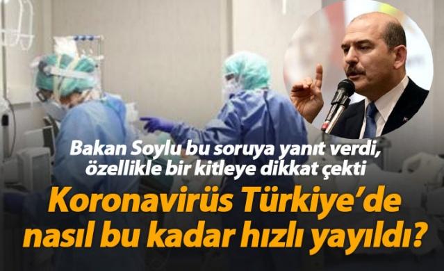 Bakan Soylu yanıtladı; Koronavirüs Türkiye'de nasıl bu kadar hızlı yayıldı?