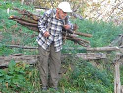 Yaş 82 sırtında odun taşıyor