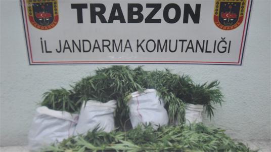 Trabzon'da gökten esrarcı düştü...