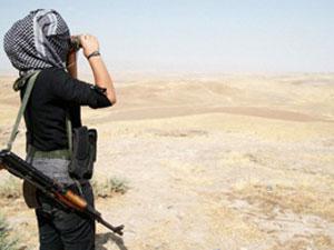 PKK'lı suç üstü yakalandı!