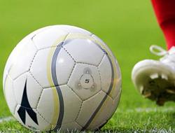 Saral'dan Beşiktaş açıklaması