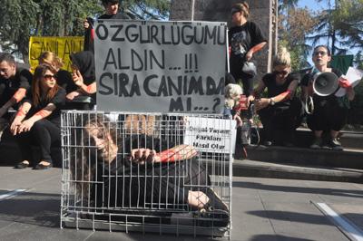 Trabzon'da hayvanlar için kafese girdi