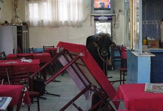 Kahvehanedekiler kendilerini dışarı zor attı