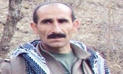Teröristi vurdu ailesine bakıyor