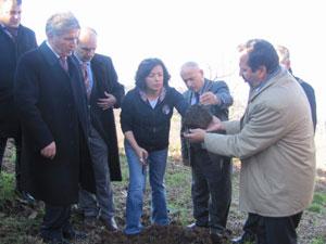 Trabzon'da çiftçilere fidan dağıtıldı