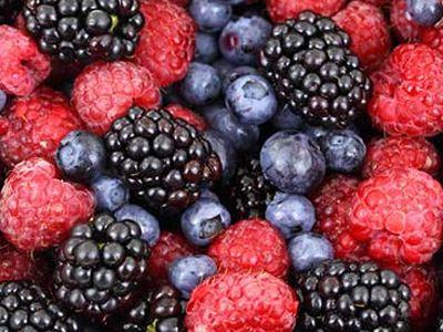 Antioksidanlar hakkında çarpıcı rapor