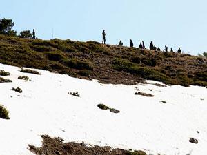 Çatışmada  4 PKK'lı Öldürüldü