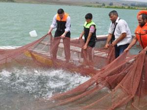 Trabzon'da iç su balıkçılığı geliştirilmeli