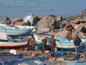 Trabzonlu balıkçılar dertli!