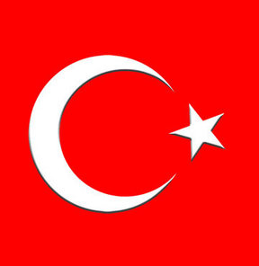 Türkiye'ye inanılmaz iftira! Yakalanan TIR'da...