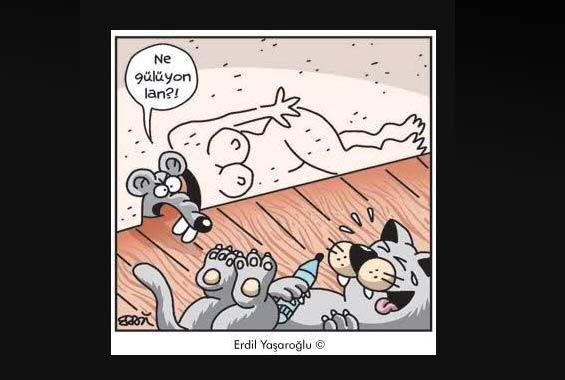 Günün en bomba karikatürleri