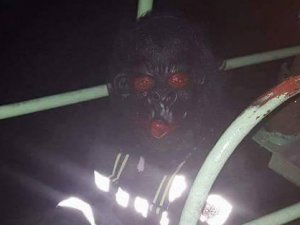 Yüzlerde maskeler ellerde sopalar - Kalandar Gecesi nedir