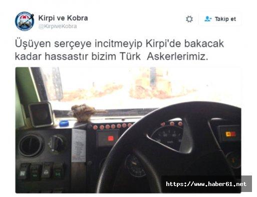 Türk askeri karda kışta teröre geçit vermiyor