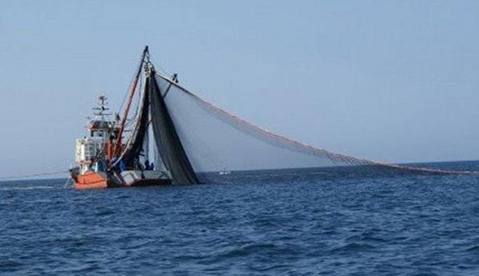 Uluslararası sularda avcılık serbest! Trabzon İl Müdürü'nden açıklama