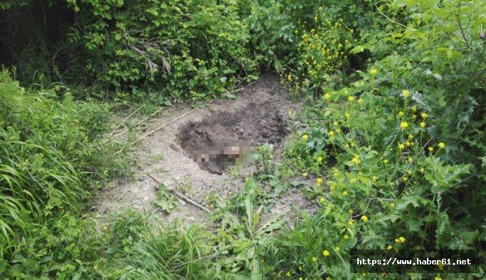 Piknik yaparken ceset buldu!
