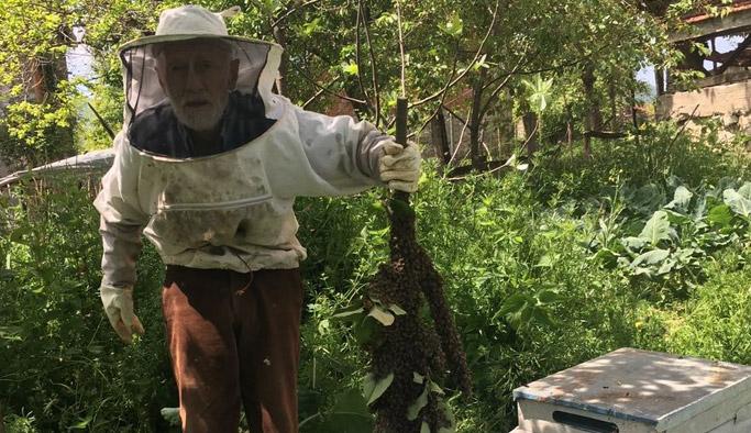 Ordulu dedenin oğul arısı sevinci