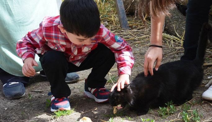 Kedinin peşinden giden minik Mert 24 saat sonra bulundu