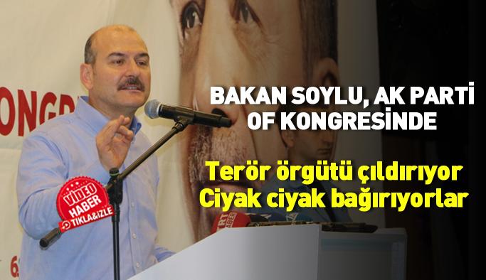 Bakan Soylu, AK Parti Of kongresinde