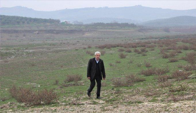 Ocak ayında gölet kurudu - Bursa haberleri