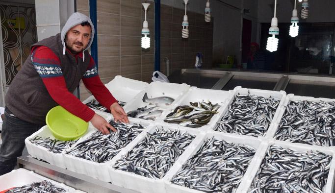 Balıkçılar hamsi için Gürcistan'a gidiyor - Ordu haberleri