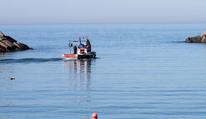 """Karadeniz'in o ilinde balıkçılar şaşkın: """"Denizde balık yok"""""""