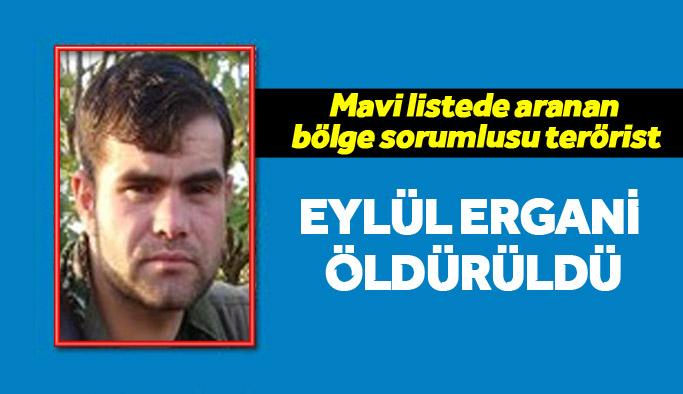 Mavi listede yer alan PKK'nın bölge sorumlusu öldürüldü
