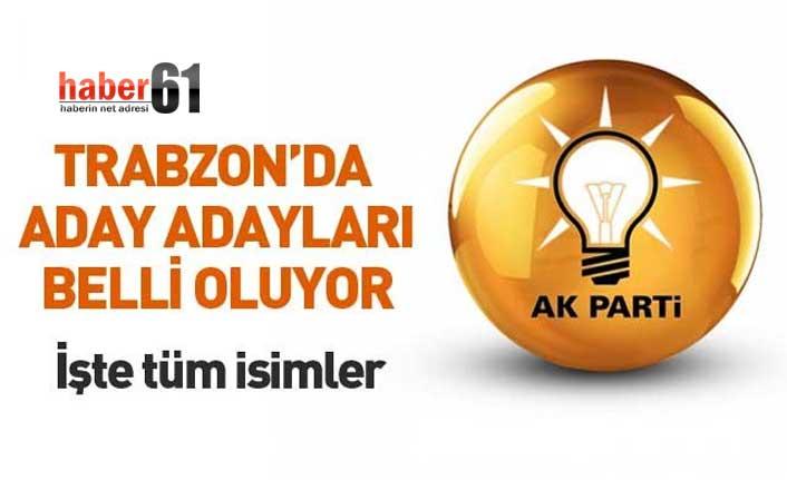 Trabzon'da AK Parti'den kimler milletvekili adayı oldu? İşte isimler