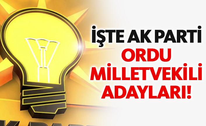 AK Parti Ordu 24 Haziran 2018 milletvekili adayları listesi... İşte adaylar
