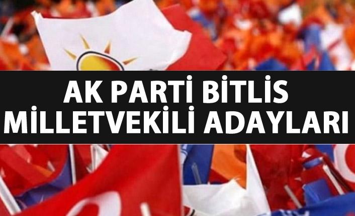 AK Parti Bitlis milletvekili adayları listesi kimlerden oluştu?