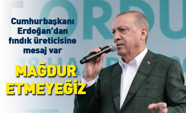 Cumhurbaşkanı Erdoğan'dan fındık üreticilerine mesaj