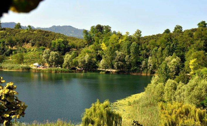 Fındık bahçelerinin arkasındaki gizli cennet: Gaga gölü