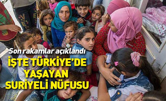 Son rakamlar açıklandı... İşte Türkiye'de yaşayan Suriyeli sayısı