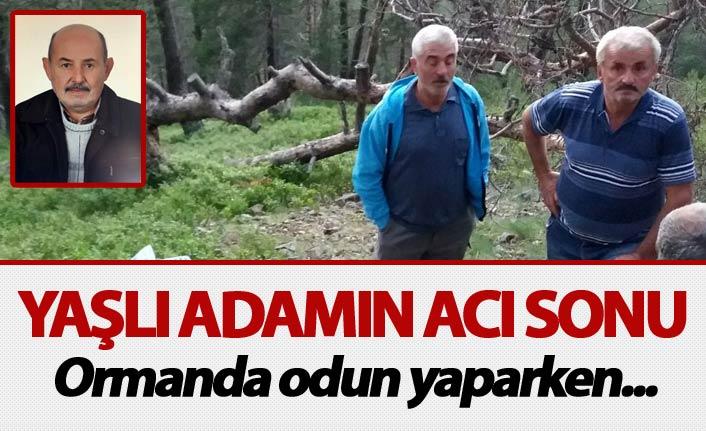 Yaşlı adamın acı sonu - Ormanda odun yaparken...