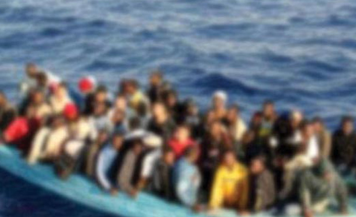 Kırklareli'nde 23 kaçak göçmen yakalandı