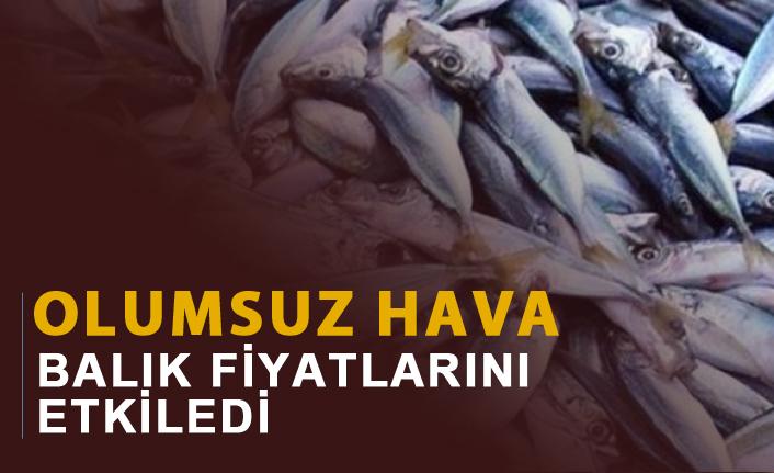 Olumsuz hava balık fiyatlarını etkiledi