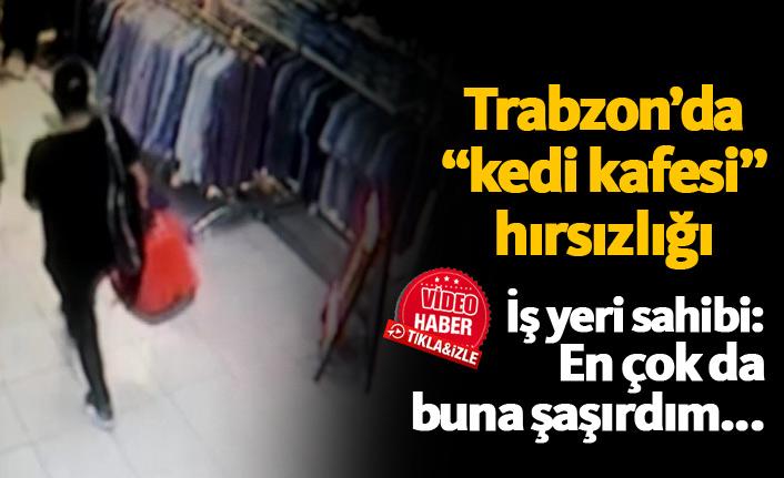 """Trabzon'da """"kedi kafesi"""" hırsızlığı"""
