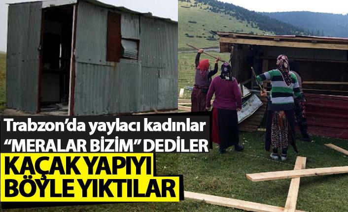 Trabzon'da yaylacı kadınlar kaçak yapıyı böyle yıktı