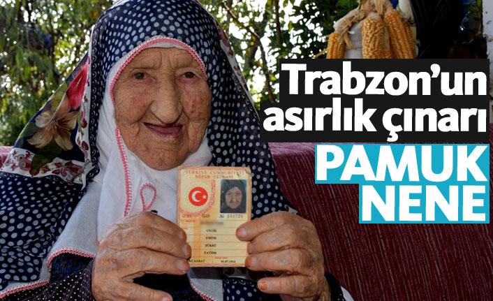 """Trabzon'un """"Pamuk Nene""""si torununun torununu gördü"""