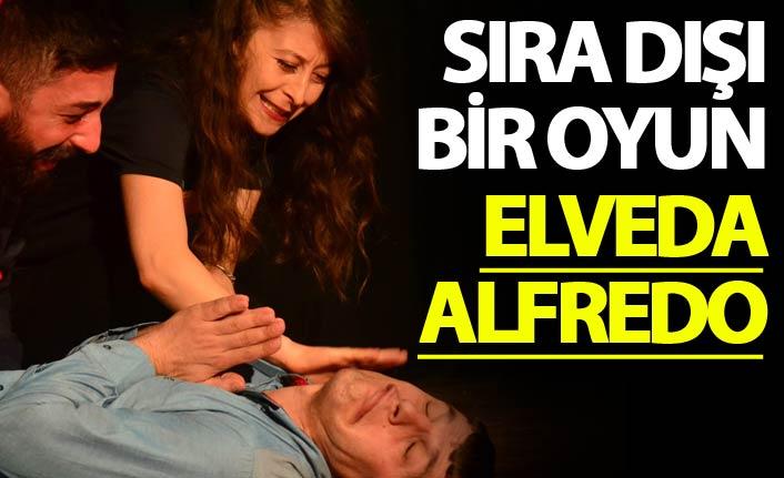 Sıra dışı bir oyun Elveda Alfredo