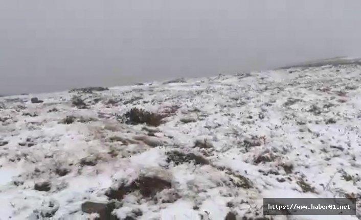 Rize'de yılın ilk karı yağdı