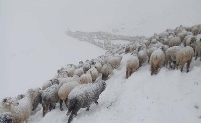 Yaylalardan göçe kar engeli